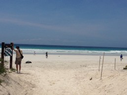 First View of Tortuga Bay Beach