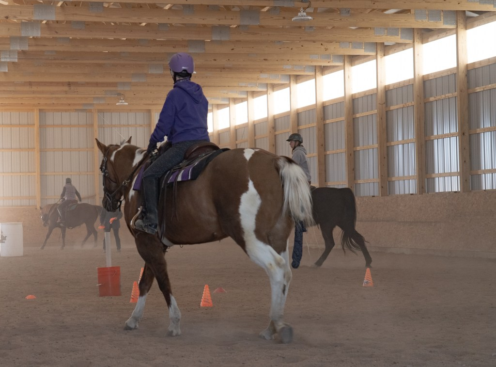 Working Equitation Feb 2 2