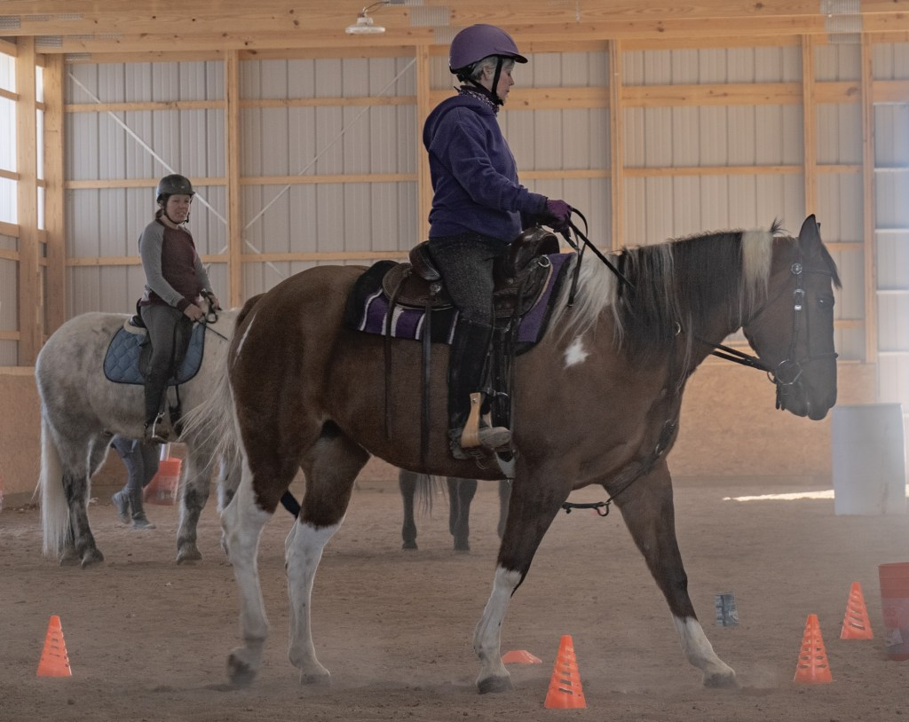 Working Equitation Feb 2 4