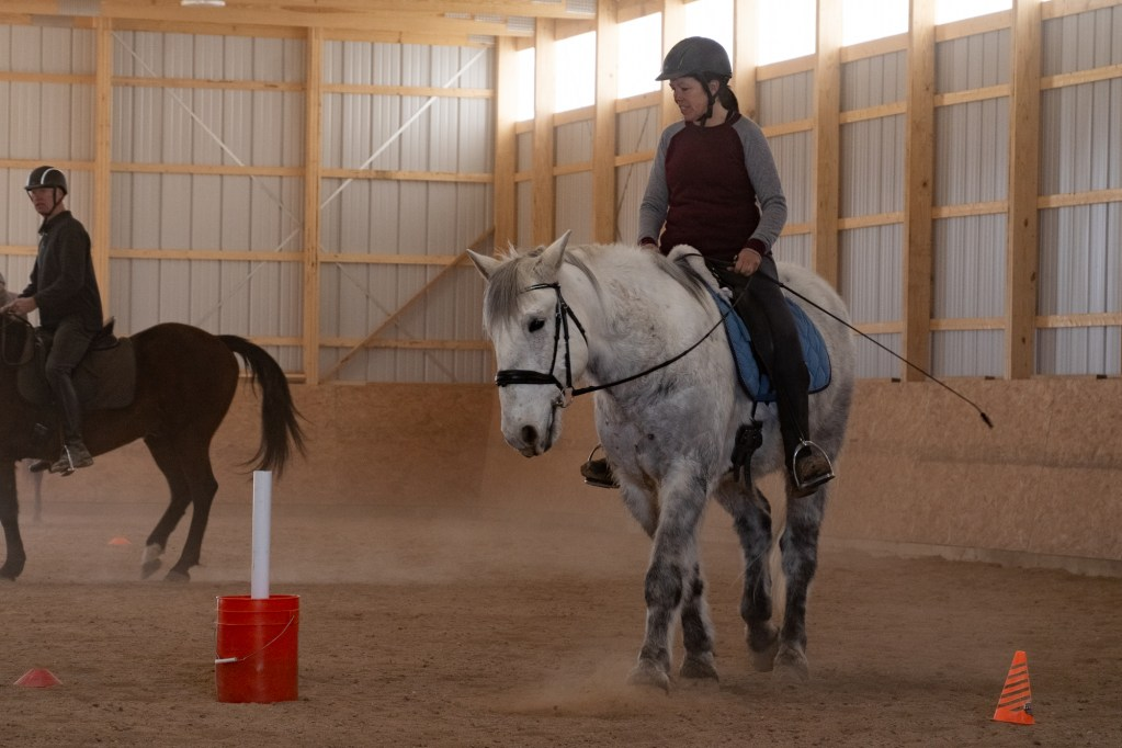 Working Equitation Feb 2 11