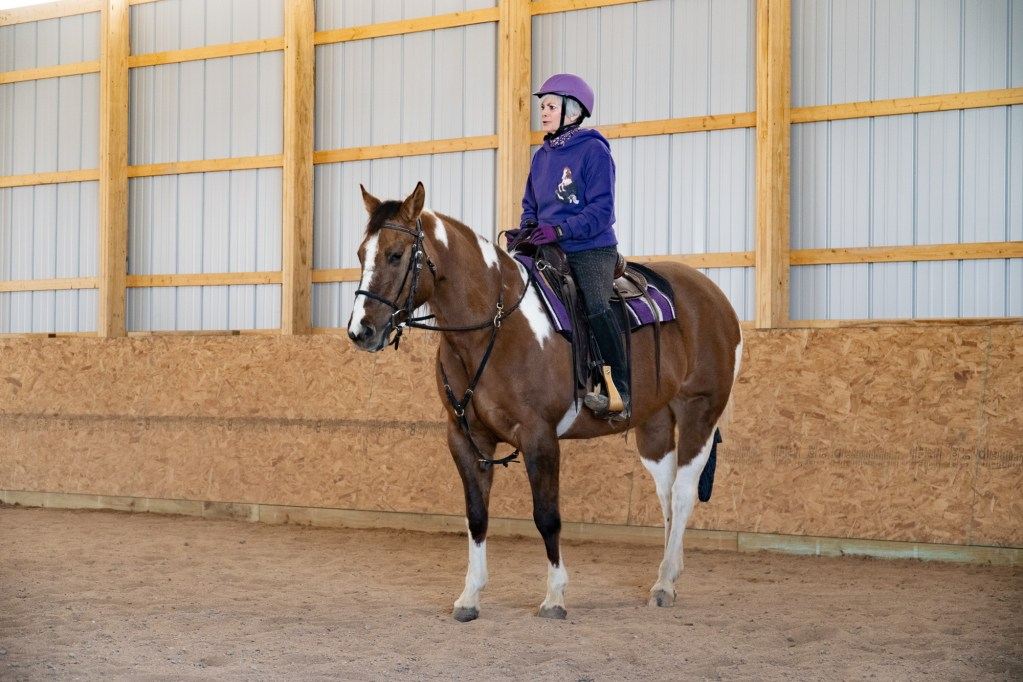 Working Equitation Feb 2 14