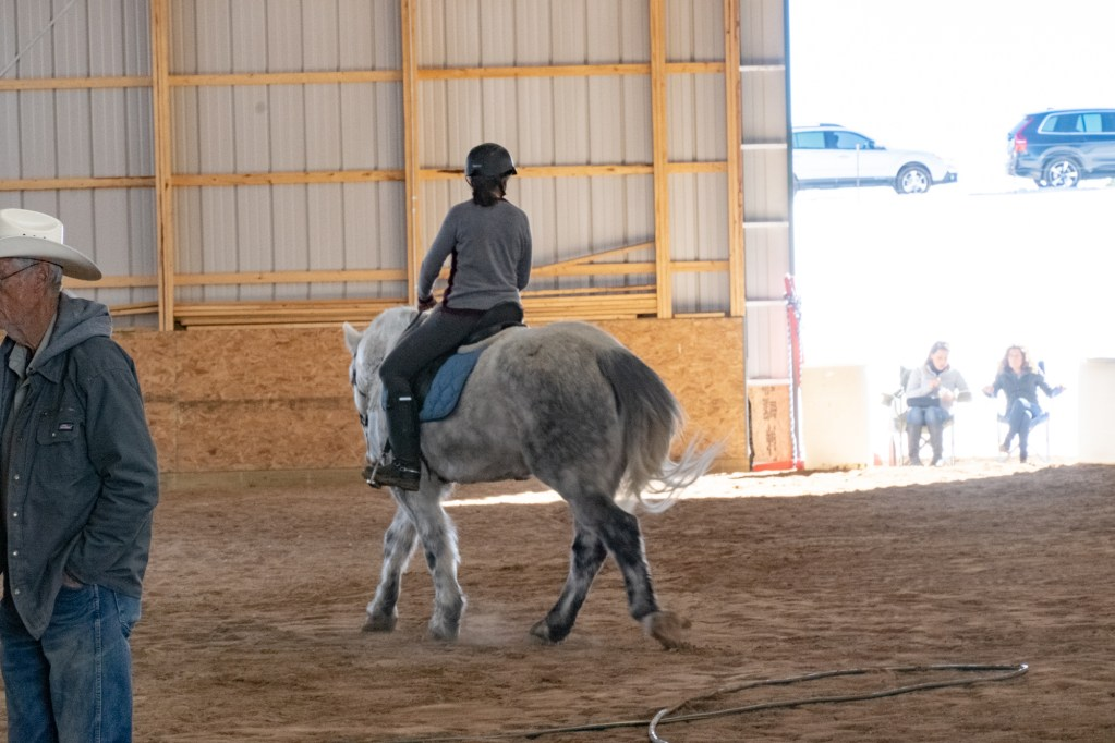 Working Equitation Feb 2 20