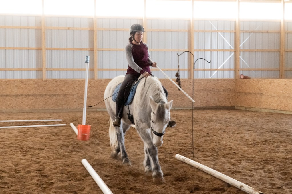 Working Equitation Feb 2 27