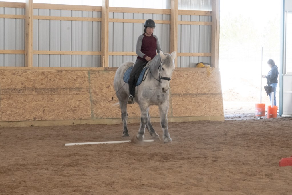 Working Equitation Feb 2 28