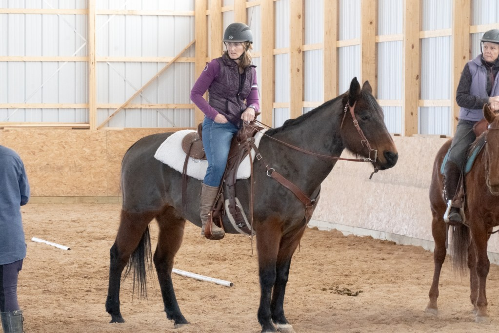 Working Equitation Feb 2 32