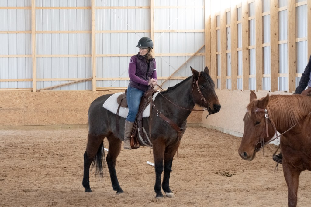 Working Equitation Feb 2 34