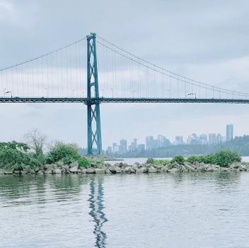 mindfulness bridge