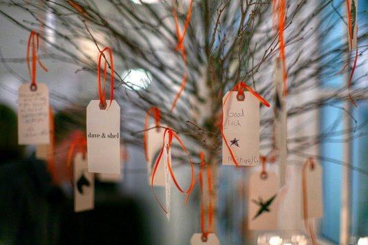 wishing tree @ the Picnic House
