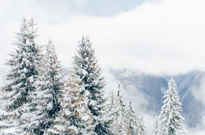 Aletschgletscher_Schweiz_Europa_Winter Travel_Kerstin Musl_03