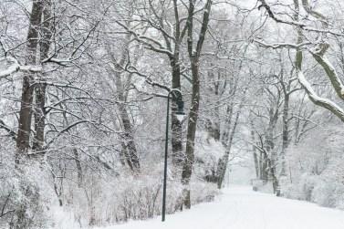 Graues Grau_Winter Berlin_Travel_Kerstin Musl_16