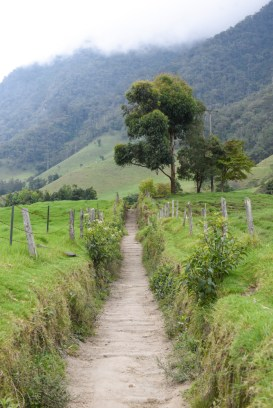 Salento-Valle del Cocora Colombia Southamerica_Travel_Kerstin Musl_09