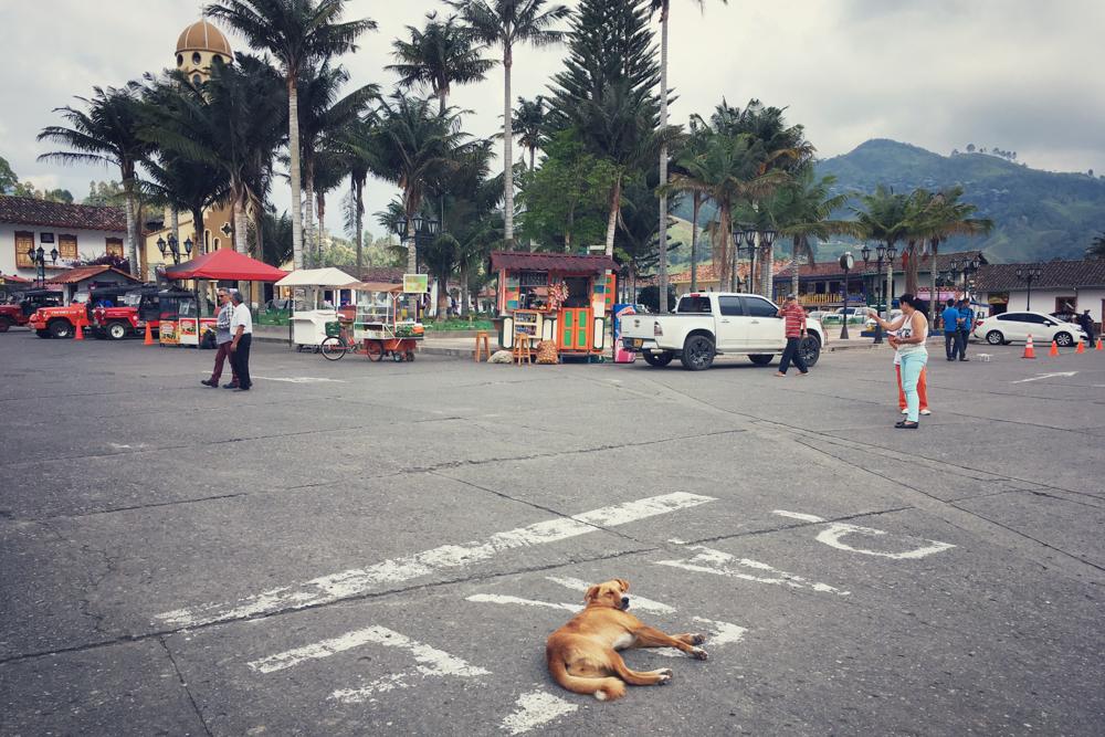 Salento-Valle del Cocora Colombia Southamerica_Travel_Kerstin Musl_31