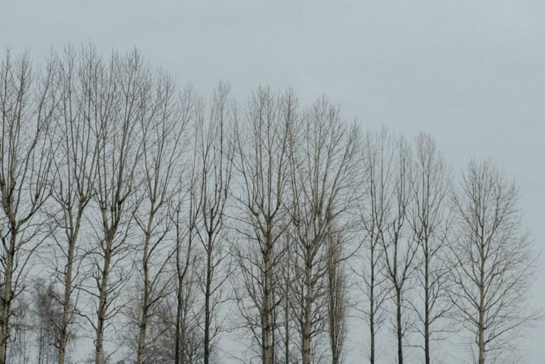 Polen Day 06_KZ Auschwitz - Birkenau_Winter 2018_Kerstin Musl_28