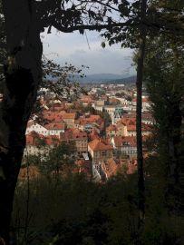 Strange Beauty From Trips Around The World & Slovenia Street Photography