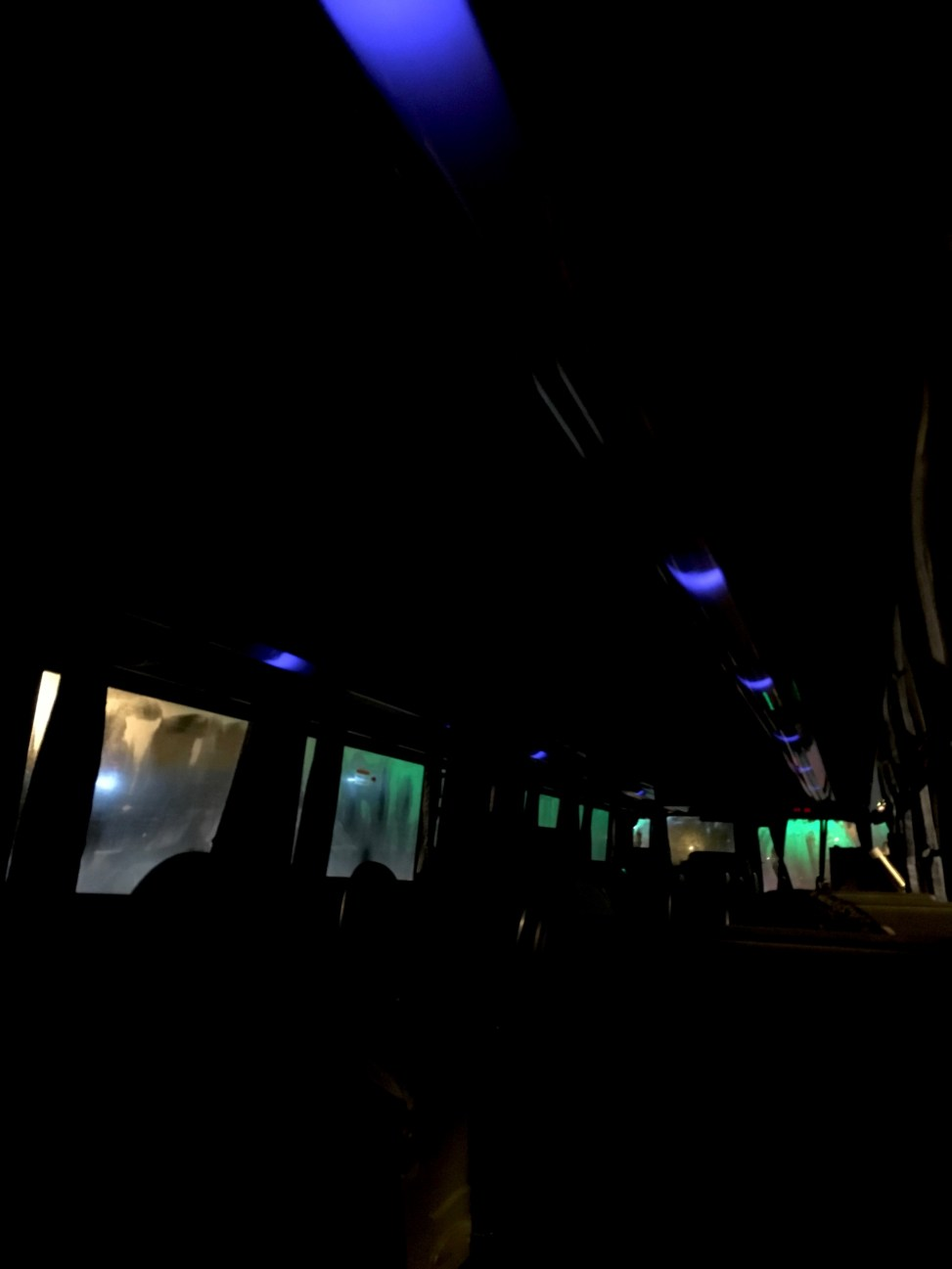 bus at night blue and green