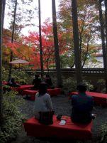 Kansai-Nara-japan-photography-pablo-kersz28