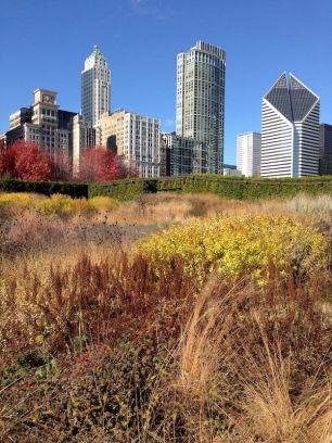 chicago-Illinois-street-photography-pablo-kersz14