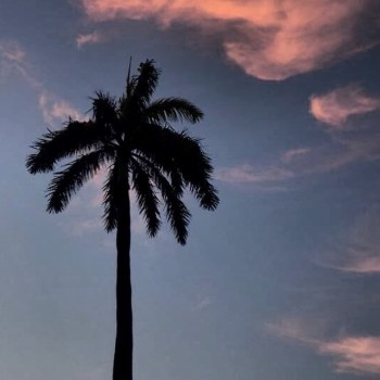 Miami Street Photography Club (Miami, FL)