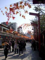 tokyo-japan-photography-pablo-kersz36