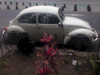 ciudad de mexico street phtography