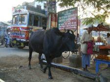 varanasi-india-asia-varanes-street-photography-kersz-15
