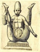 human-body-vintage-scientific-illustration-naturalist-drawing-0012