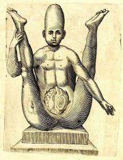 human-body-vintage-scientific-illustration-naturalist-drawing-0012