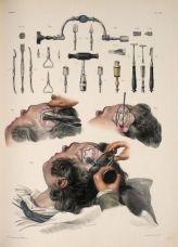 human-body-vintage-scientific-illustration-naturalist-drawing-0026