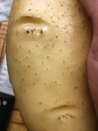 a potato with an interesting face