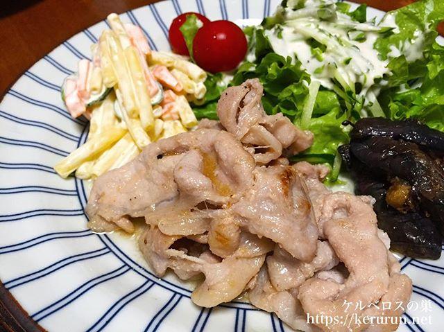 #夕飯LOG 塩生姜焼きのワンプレート