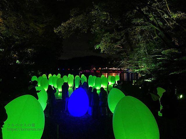 チームラボ「森と湖の光の祭」