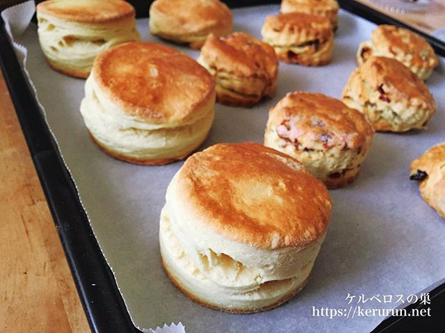 英国大使館のレシピで作るトラディショナル・スコーン