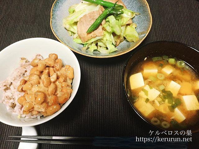 【一汁一菜】肉野菜炒め&豆腐とネギの味噌汁