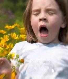 Cara Timbulnya Alergi Pada Tubuh Manusia