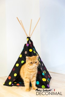 Tipi chat Design Ludique Lanvin