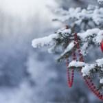 Concert de Noël à l'Église de Malo-les-bains