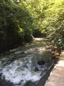 Minnehaha_creek_stream_ketan_deshpande