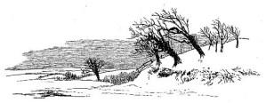 simple winter scene