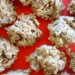 Easy No-bake Butterscotch Coconut Oaties