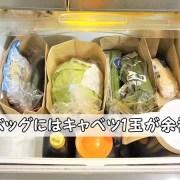 セリアガゼットバッグLL100均収納野菜室仕切りケース冷蔵庫マルシェ風紙袋折り曲げ方