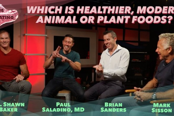 Are Modern Plant Foods Healthy?
