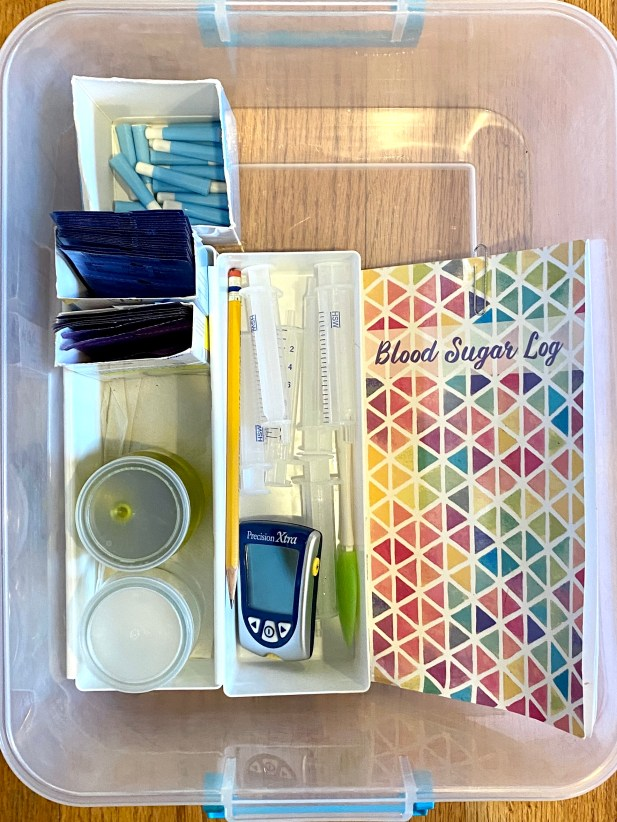 blood glucose and ketone Testing Kit for travel