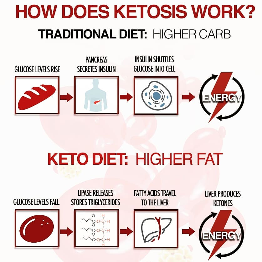 KETO DIET PLAN FOR BEGINNERS STEP BY STEP GUIDE