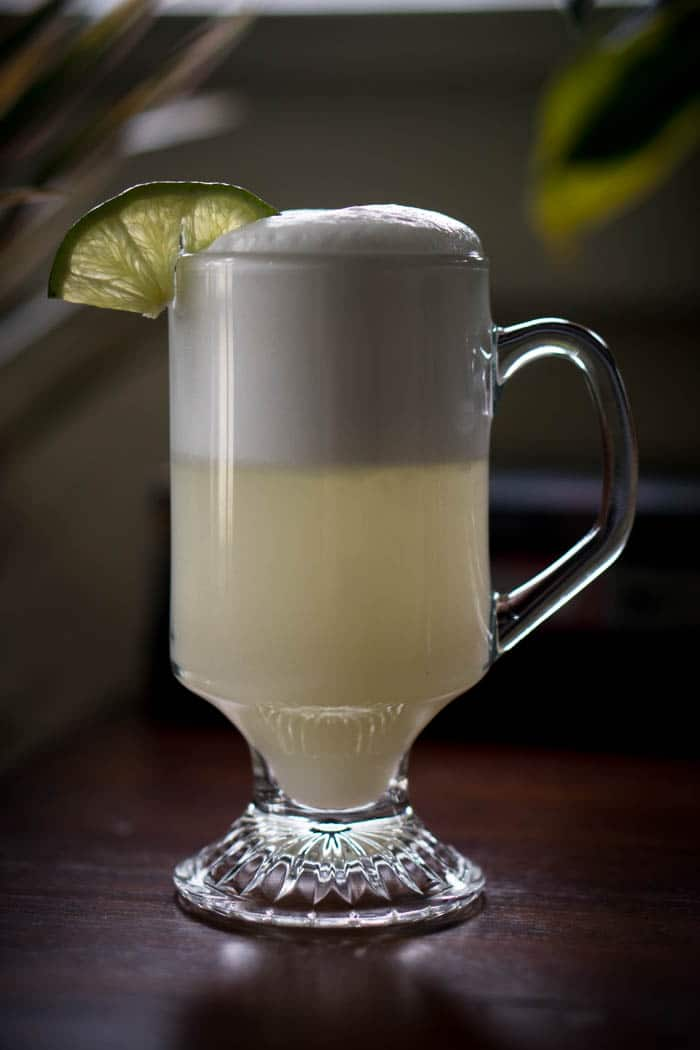 Sugar Free Gin Fizz Cocktail Recipe - Low Carb Cocktail Recipes!