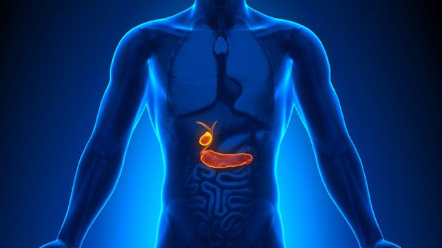 ketogenic diet gallstones ncbi