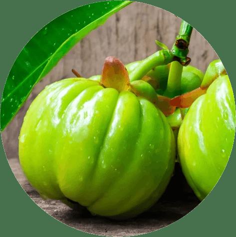 Ketosys капли для похудения