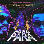 Tipsy – Para Para ft. Seanbreeze