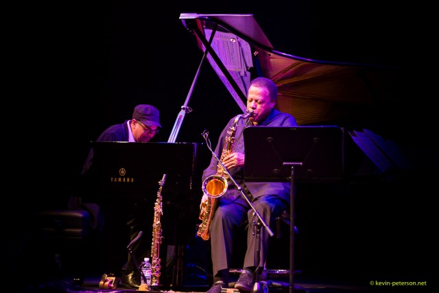 kevin_peterson _Wayne Shorter-2580