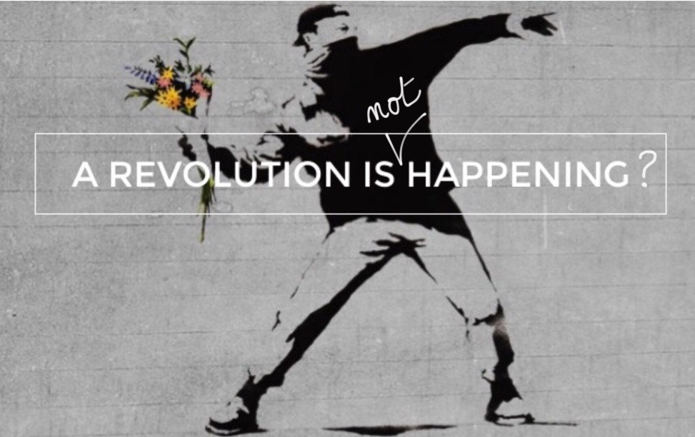 Flower thrower | Banksy