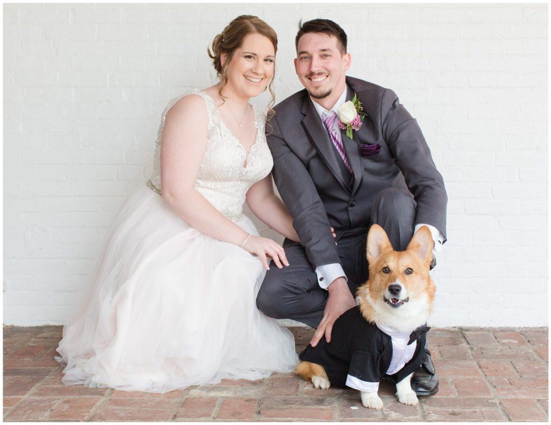 Bride and Groom and Corgi Dog Wedding Photos at Ashford Acres Inn in Cynthiana, Kentucky.